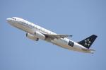WING_ACEさんが、ケアンズ空港で撮影したニュージーランド航空 A320-232の航空フォト(飛行機 写真・画像)