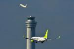 パンダさんが、羽田空港で撮影したソラシド エア 737-81Dの航空フォト(写真)