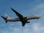 aquaさんが、羽田空港で撮影したJALエクスプレス 737-846の航空フォト(写真)