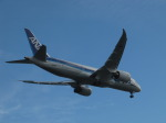 aquaさんが、羽田空港で撮影した全日空 787-8 Dreamlinerの航空フォト(写真)
