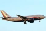 Itami Spotterさんが、成田国際空港で撮影したカナダ軍 A310-304の航空フォト(飛行機 写真・画像)