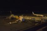 宮崎空港 - Miyazaki Airport [KMI/RJFM]で撮影された全日空 - All Nippon Airways [NH/ANA]の航空機写真