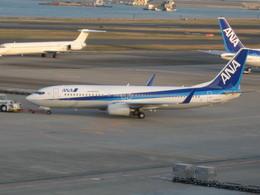 じょーまうすさんが、羽田空港で撮影した全日空 737-881の航空フォト(飛行機 写真・画像)