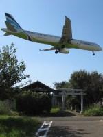 aquaさんが、成田国際空港で撮影したエアプサン A321-131の航空フォト(飛行機 写真・画像)