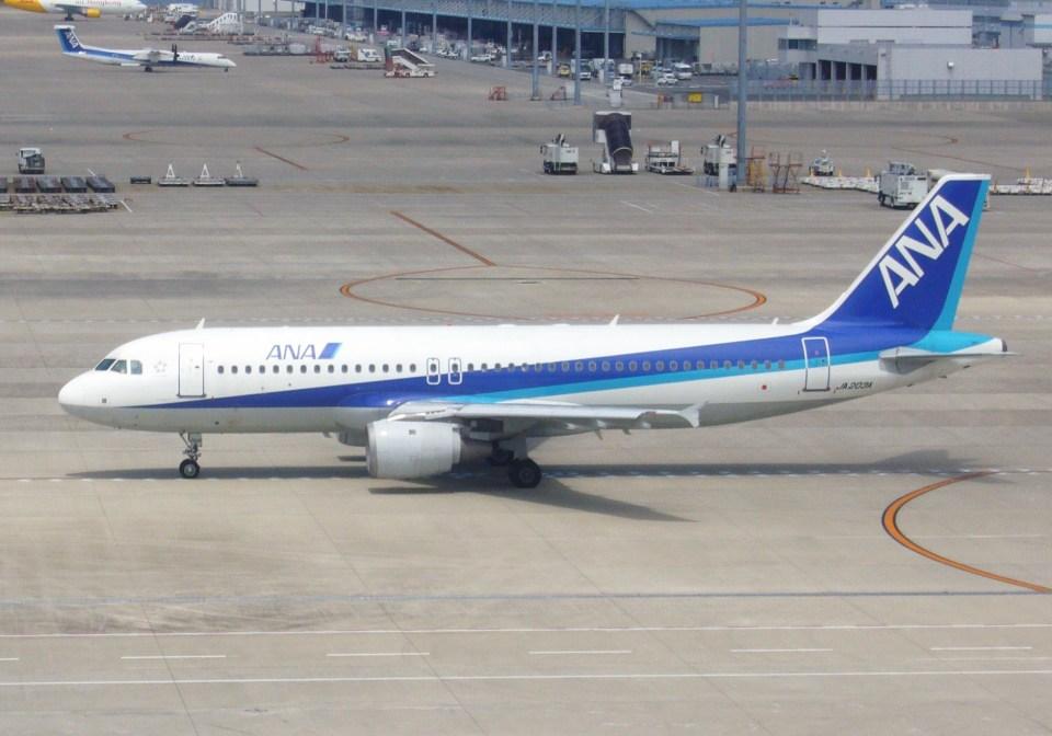 ふうちゃんさんの全日空 Airbus A320 (JA203A) 航空フォト