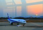 ふじいあきらさんが、広島空港で撮影した全日空 777-281の航空フォト(飛行機 写真・画像)