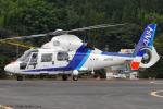 Chofu Spotter Ariaさんが、静岡ヘリポートで撮影したオールニッポンヘリコプター AS365N2 Dauphin 2の航空フォト(飛行機 写真・画像)