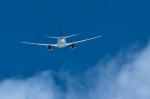 パンダさんが、成田国際空港で撮影した全日空 737-781の航空フォト(写真)