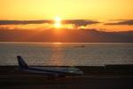 たにへいさんが、中部国際空港で撮影した全日空 A320-211の航空フォト(写真)