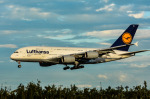 パンダさんが、成田国際空港で撮影したルフトハンザドイツ航空 A380-841の航空フォト(写真)