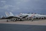 Scotchさんが、オシアナ海軍航空基地アポロソーセックフィールドで撮影したアメリカ海軍 F-14B Tomcatの航空フォト(飛行機 写真・画像)