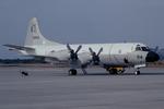 Scotchさんが、鹿屋航空基地で撮影した海上自衛隊 P-3Cの航空フォト(写真)