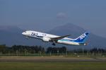 xxxxxzさんが、鹿児島空港で撮影した全日空 787-8 Dreamlinerの航空フォト(飛行機 写真・画像)