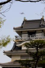 能満寺山公園で撮影されたANAウイングス - ANA Wings [EH/AKX]の航空機写真