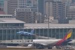 パンダさんが、福岡空港で撮影した航空自衛隊 T-4の航空フォト(写真)