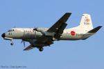 Chofu Spotter Ariaさんが、厚木飛行場で撮影した海上自衛隊 YS-11-112Mの航空フォト(飛行機 写真・画像)