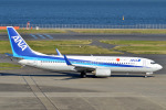 Peter Hoさんが、羽田空港で撮影した全日空 737-881の航空フォト(写真)