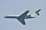 パンダさんが、入間飛行場で撮影した航空自衛隊 U-4 Gulfstream IV (G-IV-MPA)の航空フォト(写真)