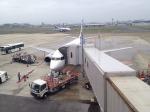 Super Dolphinさんが、福岡空港で撮影したANAウイングス 737-5L9の航空フォト(飛行機 写真・画像)