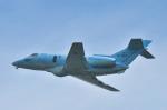 パンダさんが、入間飛行場で撮影した航空自衛隊 U-125A(Hawker 800)の航空フォト(写真)