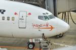 パンダさんが、福岡空港で撮影した日本トランスオーシャン航空 737-446の航空フォト(写真)