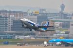 パンダさんが、福岡空港で撮影したANAウイングス 737-5Y0の航空フォト(飛行機 写真・画像)