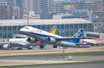 パンダさんが、福岡空港で撮影した全日空 A320-211の航空フォト(写真)