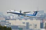 パンダさんが、福岡空港で撮影したANAウイングス DHC-8-402Q Dash 8の航空フォト(写真)