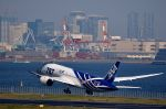 tomo@Germanyさんが、羽田空港で撮影した全日空 787-8 Dreamlinerの航空フォト(写真)