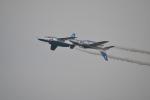 chichiさんが、入間飛行場で撮影した航空自衛隊 T-4の航空フォト(写真)