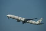 m-takagiさんが、シドニー国際空港で撮影したエティハド航空 777-3FX/ERの航空フォト(飛行機 写真・画像)