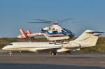 パンダさんが、羽田空港で撮影した朝日新聞社 MD 900/902の航空フォト(飛行機 写真・画像)