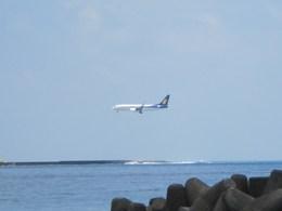 masa707さんが、ヴェラナ国際空港で撮影したジェットエアウェイズ 737-85Rの航空フォト(飛行機 写真・画像)