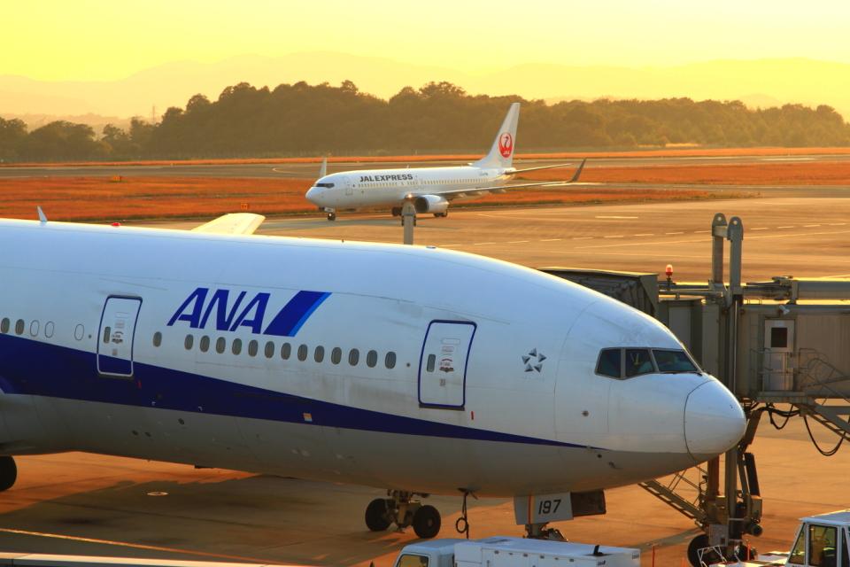 ふじいあきらさんの全日空 Boeing 777-200 (JA8197) 航空フォト