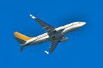 パンダさんが、羽田空港で撮影した南山公務 737-7ZH BBJの航空フォト(写真)