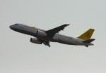 Sirius8981さんが、香港国際空港で撮影したロイヤルブルネイ航空 A320-232の航空フォト(写真)