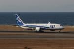 たにへいさんが、中部国際空港で撮影した全日空 787-8 Dreamlinerの航空フォト(写真)