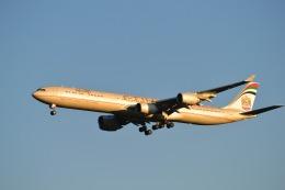こずぃろうさんが、ワシントン・ダレス国際空港で撮影したエティハド航空 A340-642Xの航空フォト(飛行機 写真・画像)