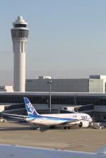 kuxiuxingさんが、中部国際空港で撮影した全日空 787-8 Dreamlinerの航空フォト(写真)
