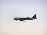 なまくら はげるさんが、成田国際空港で撮影した全日空 A320-214の航空フォト(写真)