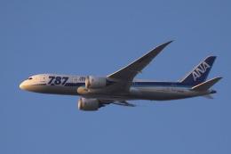 多楽さんが、阿見飛行場で撮影した全日空 787-8 Dreamlinerの航空フォト(飛行機 写真・画像)