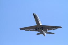 名古屋飛行場で撮影された名古屋飛行場の航空機写真