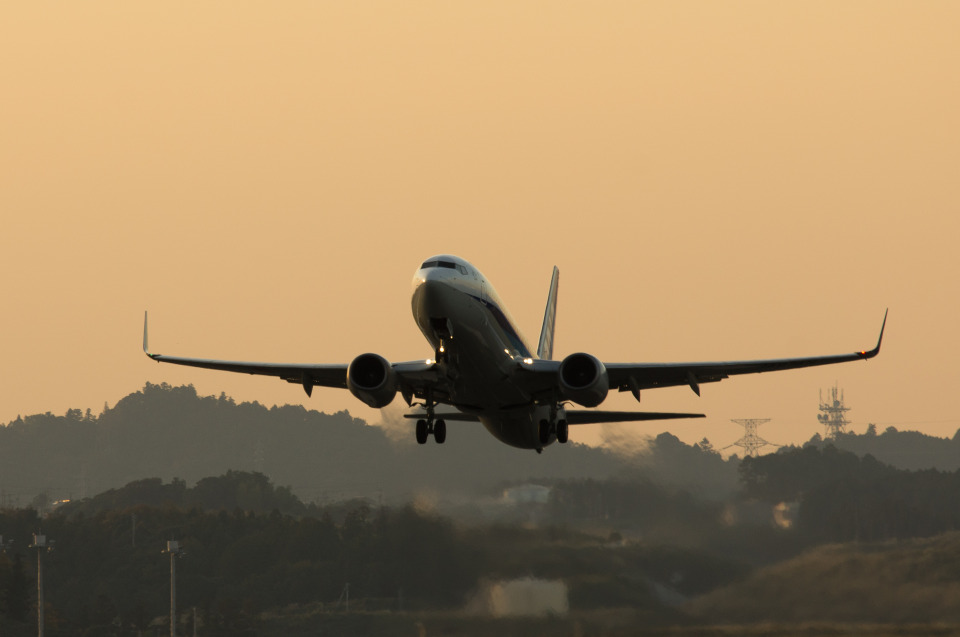 xxxxxzさんの全日空 Boeing 737-800 (JA67AN) 航空フォト