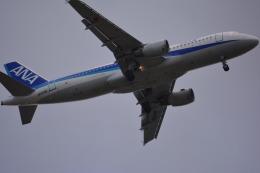 IWJで撮影されたIWJの航空機写真