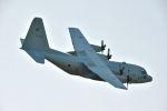 c59さんが、岐阜基地で撮影した航空自衛隊 C-130H Herculesの航空フォト(飛行機 写真・画像)