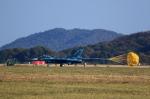T.Sazenさんが、岐阜基地で撮影した航空自衛隊 F-2Aの航空フォト(写真)