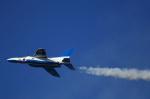 T.Sazenさんが、岐阜基地で撮影した航空自衛隊 T-4の航空フォト(写真)
