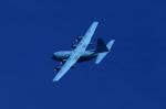 T.Sazenさんが、岐阜基地で撮影した航空自衛隊 C-130H Herculesの航空フォト(写真)