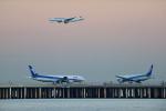 MizukinPaPaさんが、羽田空港で撮影した全日空 777-281/ERの航空フォト(写真)