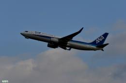 妄想竹さんが、新千歳空港で撮影した全日空 737-881の航空フォト(飛行機 写真・画像)